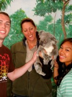 Visiting the koalas at the Currumbin Wildlife Sanctuary