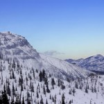Well-spaced trees fill the cat skiing area at Castle Mountain Resort